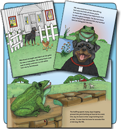 Pages from the watchfrog story